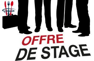 Offre de stage assistant commercial (H/F)