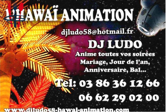 DJ Animateur Pro
